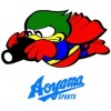 ph-aoyama-sports01